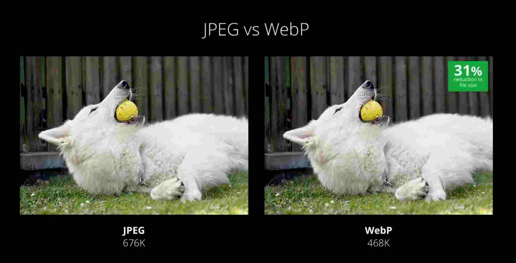 JPEG vs WebP
